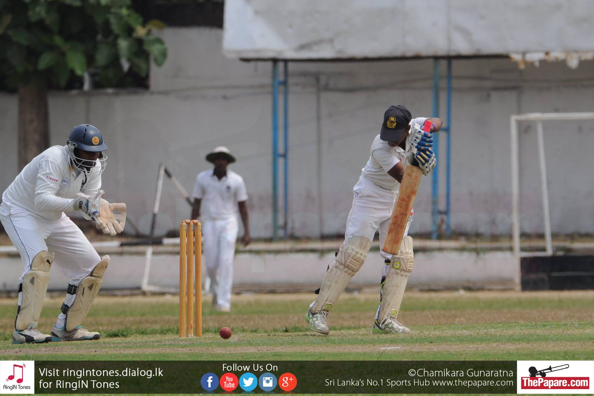 St Peters College vs D S Senanayake College