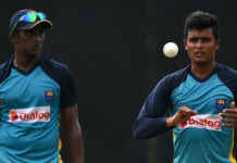 Vandersay replaces injured Malinga in Sri Lanka's WT20 squad