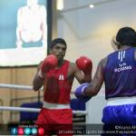 91st ABA Boxing championship