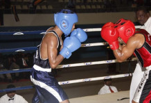 Clifford Cup Boxing Championships - 2016