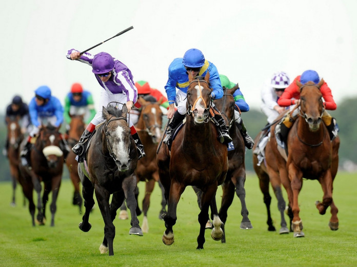 Sri lanka horse racing