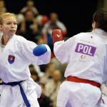 International Karate season