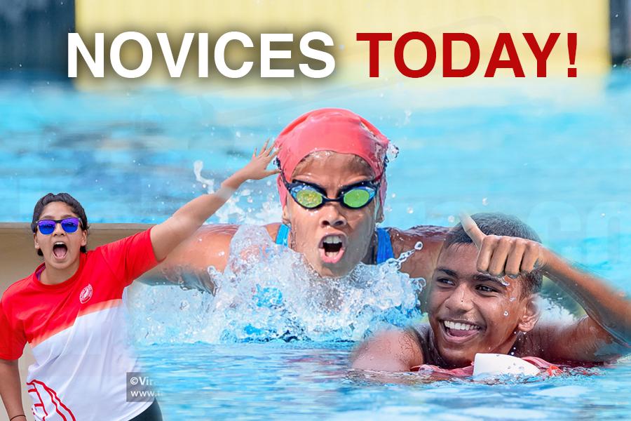 Novices Swimming 2019