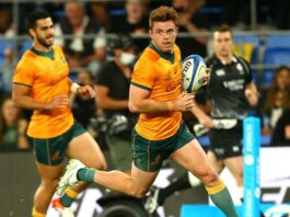 Andrew Kellaway scored a hat-trick during the Wallabies' win over Argentina..