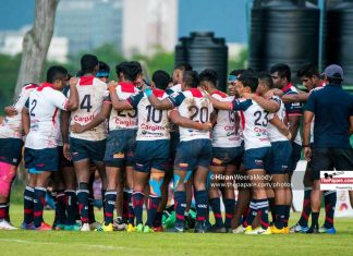 Dialog Rugby League