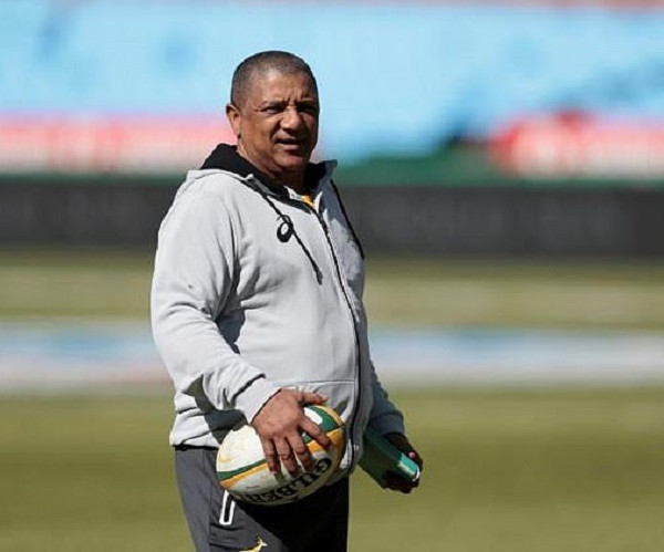 Boks begin journey of discovery against Pumas
